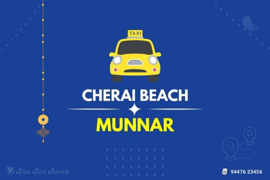 Cherai to Munnar taxi (Featured Image)