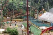 Dreamland Fun & Adventure