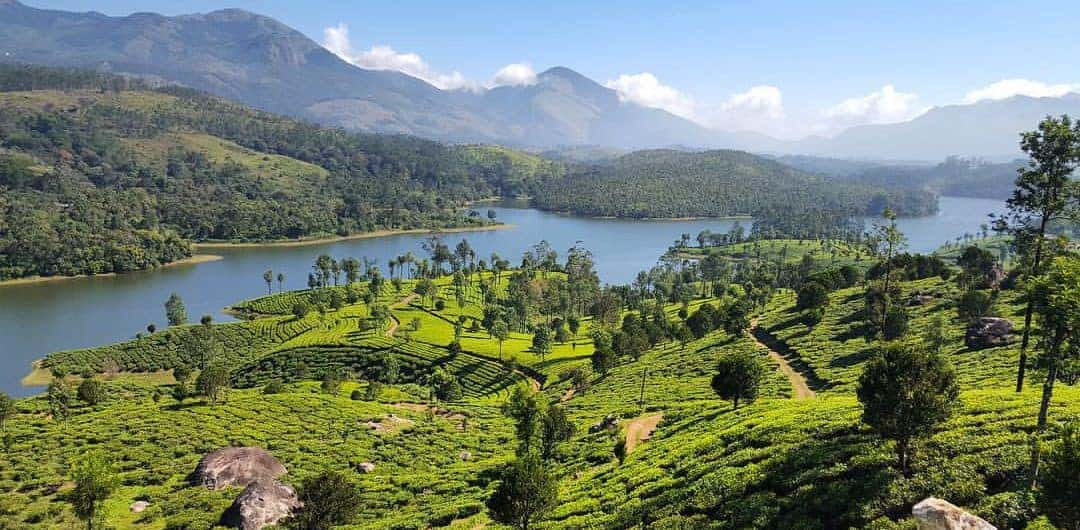 Best Places to Visit in Munnar in 2 days